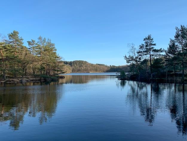 澄んだ青い空の下で高山の木々に囲まれた風光明媚な川