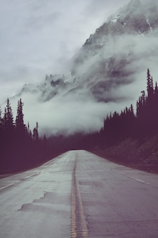 山の風光明媚な道