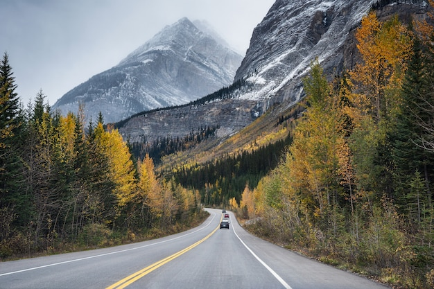 Scenic road trip with rocky mountain in autumn forest at jasper national park
