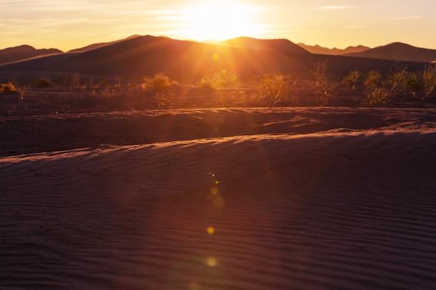 砂漠の風光明媚な砂丘
