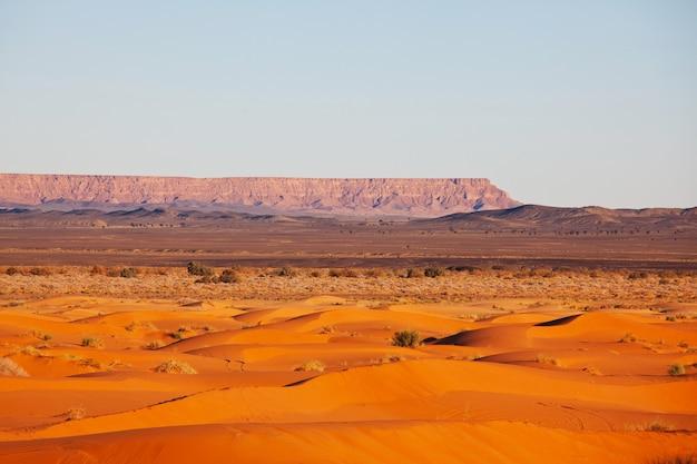 Живописные песчаные дюны в пустыне