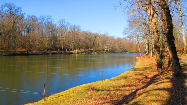 Colpo panoramico di un fiume con i marcatori di stringa su un palo