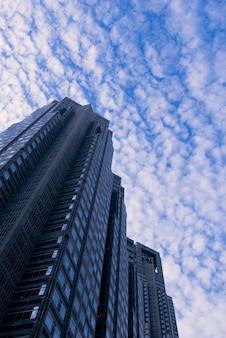 일본 신주쿠 구 도쿄 시청 건물의 경치 좋은 하늘