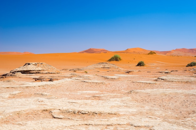 The scenic sossusvlei and deadvlei, clay and salt pan surrounded by majestic sand dunes.