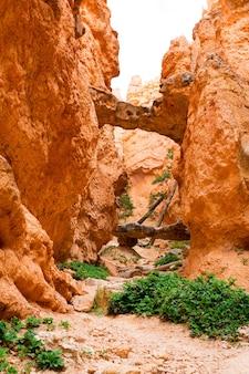 협곡의 경치 좋은 돌 산