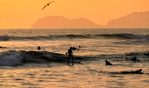 Scenic sunset moment with silhouettes of surfers and seagulls on the pacific ocean. lima, peru. south america