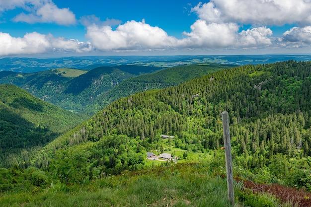 青い曇り空の下で木がたくさんある風光明媚な渓谷