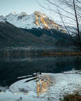 Verticale panoramico di un lago con un'anatra che nuota e alpi di montagna