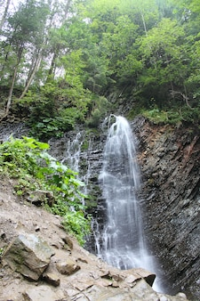 Scenic view of high waterfall in green forest