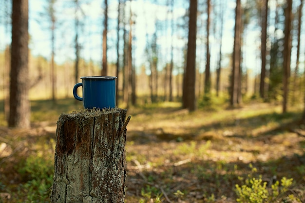 Scenic view of hiking enameled cup of tea on stump in foreground with pine trees and blue sky in background.
