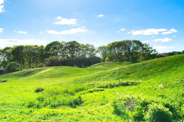 都市公園の雲と明るい青空を背景に美しい小さな山、丘、緑の芝生のある塚の風光明媚な景色。