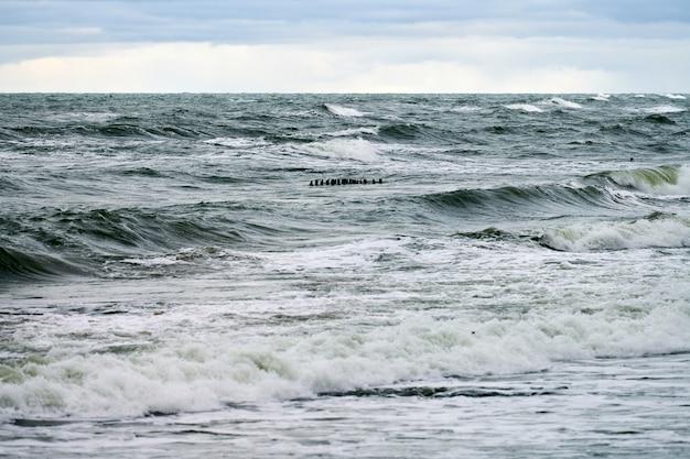 Живописный вид на синее море с пузырящимися и пенящимися волнами. старинные длинные деревянные волнорезы, уходящие далеко в море, зимний пейзаж балтийского моря. тишина, уединение, спокойствие и покой.