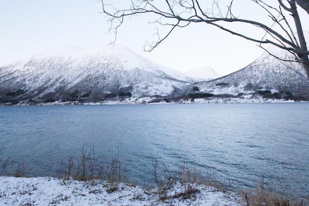 Живописный вид на озеро среди гор и деревьев зимой