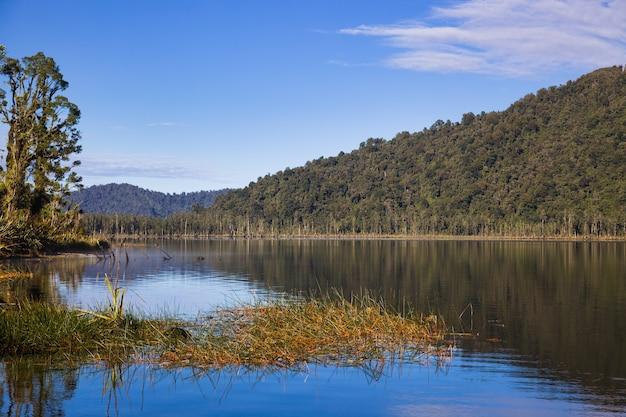 뉴질랜드 마히나푸아 호수의 경치