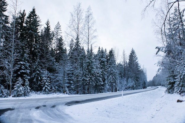 Scenic view of the road cover in snow