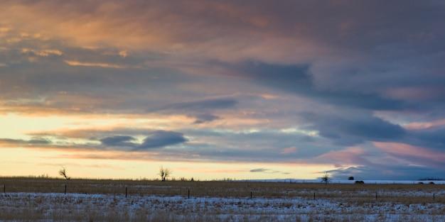 Scenic view of snow covered landscape, cremona, cowboy trail, alberta highway 22, alberta, canada