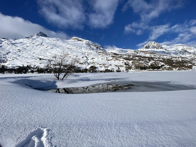 Scenic view of a snowy landscape with a small pond