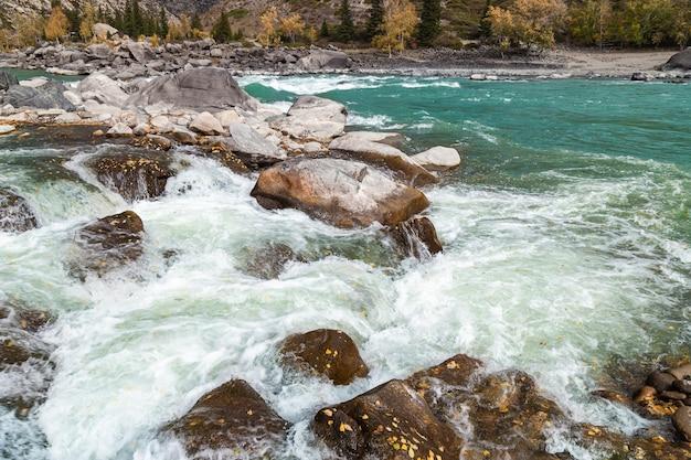 Живописные виды на бирюзовую реку катунь, республика алтай, россия.
