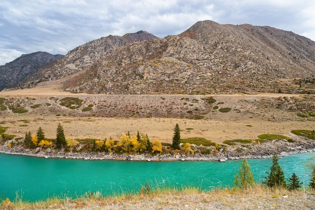 Живописные виды на бирюзовую реку катунь и горы алтая осенью