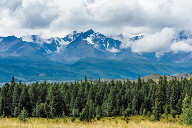 Scenic views of the snow-capped mountains of altai in the kurai steppe