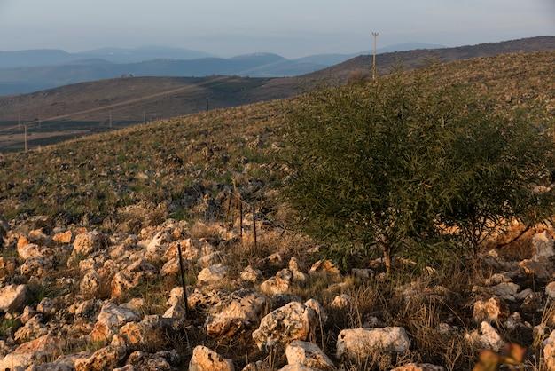 Вид пейзажа пейзажа, галилейское море, галилея, израиль