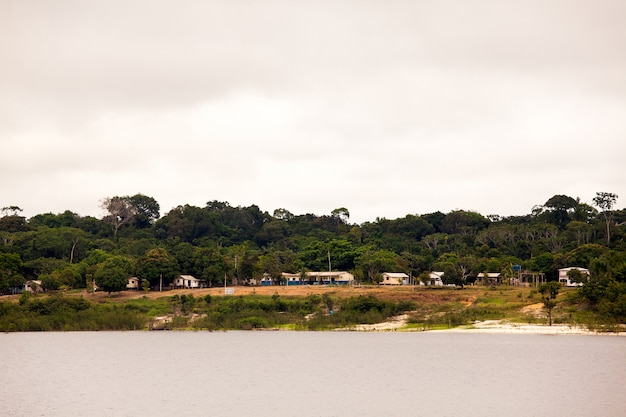 アマゾン川の島の学校と住宅
