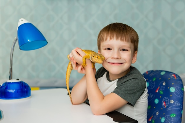 A schoolboy boy sits at a desk and holds a yellow lizard