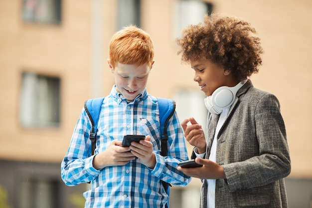 Schoolboys studying online