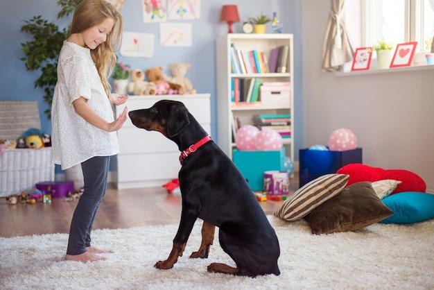 개를 훈련시키는 것은 많은 인내심을 요구합니다