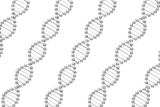 과학 개념입니다. 흰색 배경에 금속 dna 분자 나선형의 행. 3d 렌더링