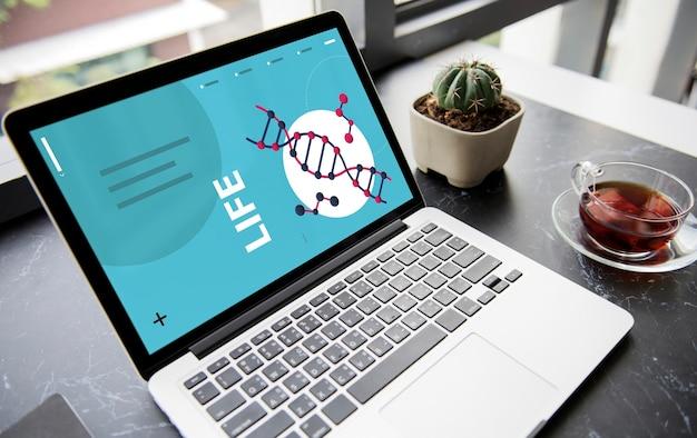 과학 dna 연구 개발 인간