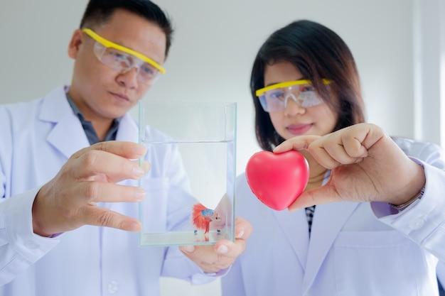 Ученый доктор держит красное сердце и рыбный танк