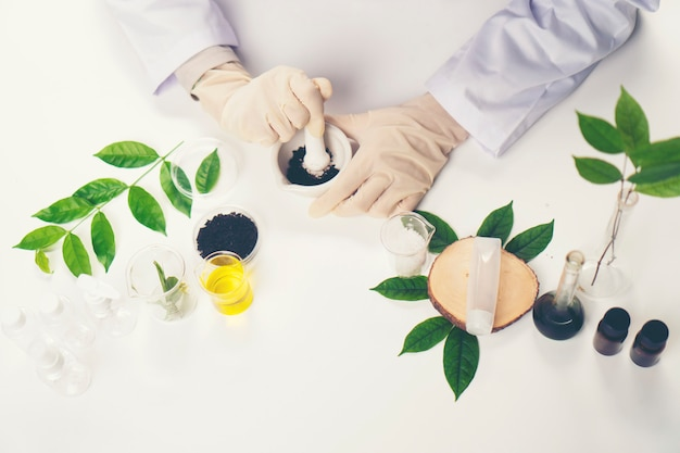 The scientist, doctor, make alternative herb medicine