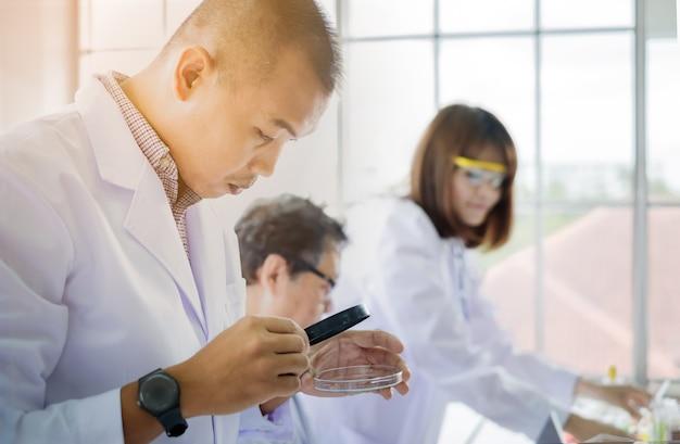 Ученый доктор мужчина смотрит стекло тестера