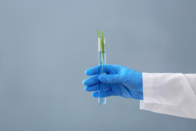 植物と試験管を保持している科学者