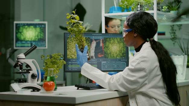 医学実験のために緑の苗木を見ている科学者