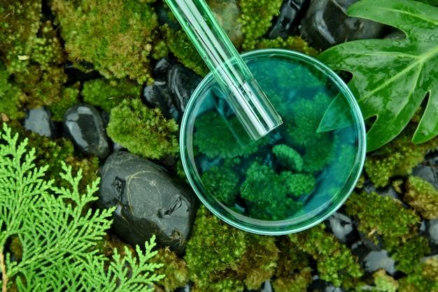 科学者がペトリ皿に有機エッセンス物質を注ぐ