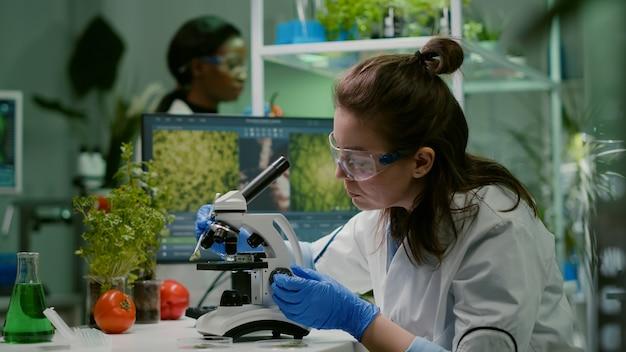 유전자 변형 녹색 잎을 조사하는 과학자 연구원