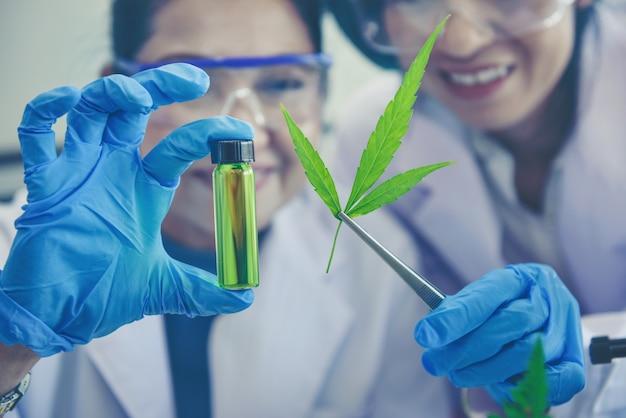 Ученые-исследователи изучают добычу конопляного масла для медицинских