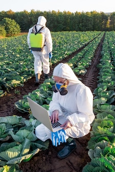 Scientist wearing white protective suit chemical mask and glasses uses laptop on farm field