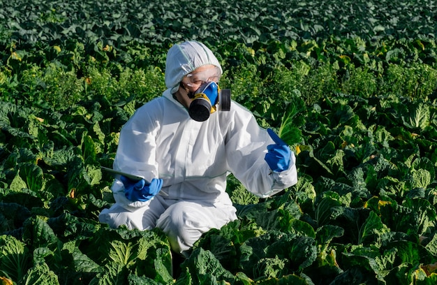 Scientist  white protective suit chemical mask and glasses uses tablet on farm field