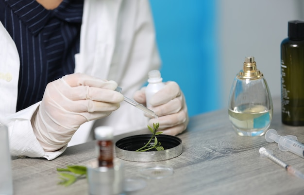 天然薬の研究、ガラス製品の天然有機および科学的抽出、代替グリーンハーブ医学、天然スキンケア美容製品、実験室および開発コンセプトを持つ科学者。