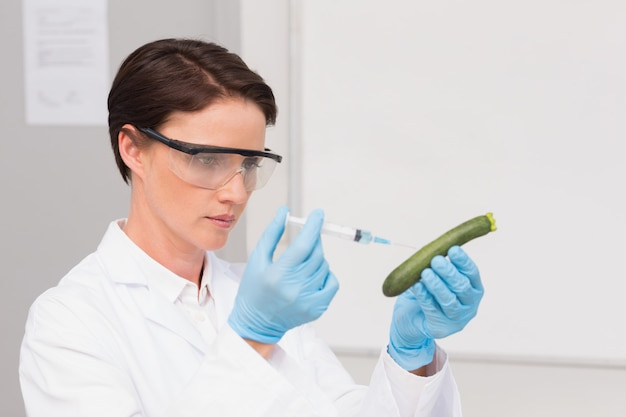 Scientist working attentively with courgette
