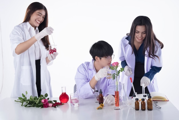 The scientists conducting experiments in laboratory,team of researchers in chemical and nature organic extract,aromatic essential research in lab test
