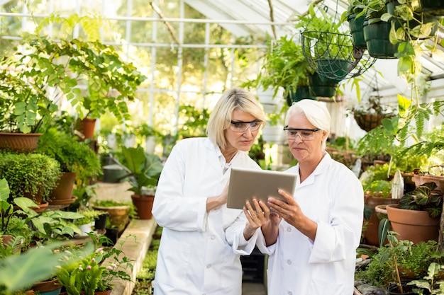 温室でデジタルタブレットを議論する科学者