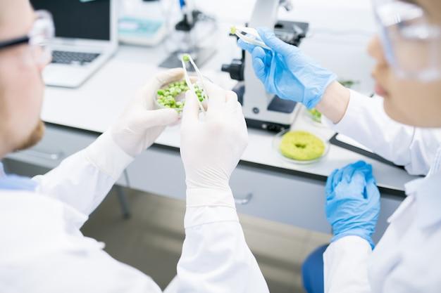 実験室で研究を行う科学者