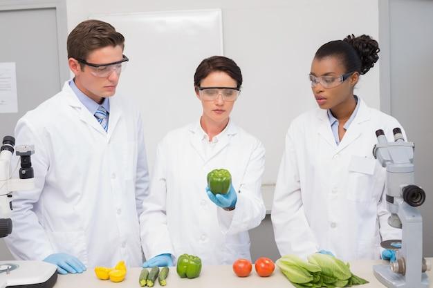 野菜を調べる科学者