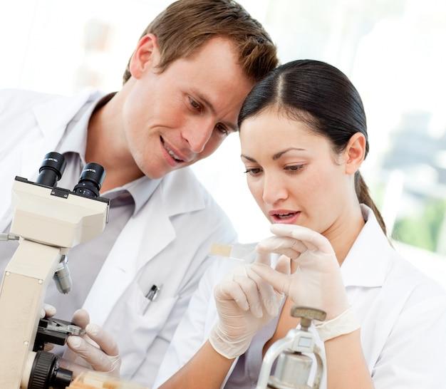과학자는 현미경 슬라이드를보고