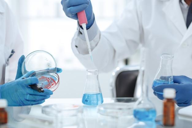페트리 접시에서 액체를 테스트하는 과학자