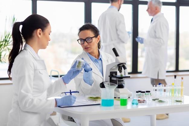 Ученые, работающие вместе, средний план